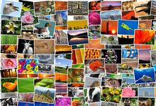 Fotos viatges
