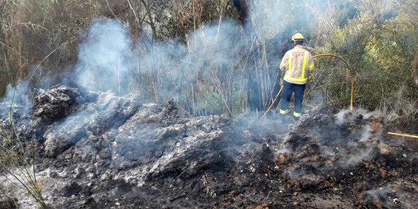 incendi forestal